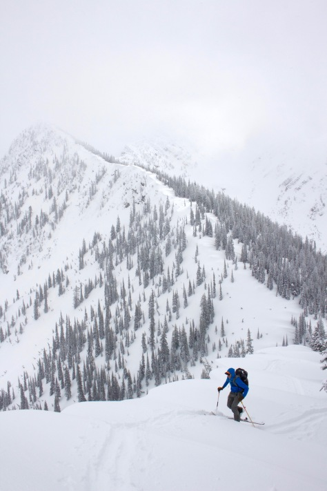 whitefish backcountry skiing